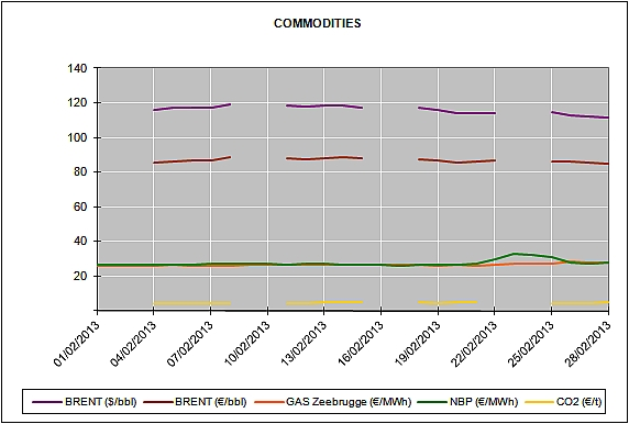Report of the Energy Market Prices for the month of February 2013
