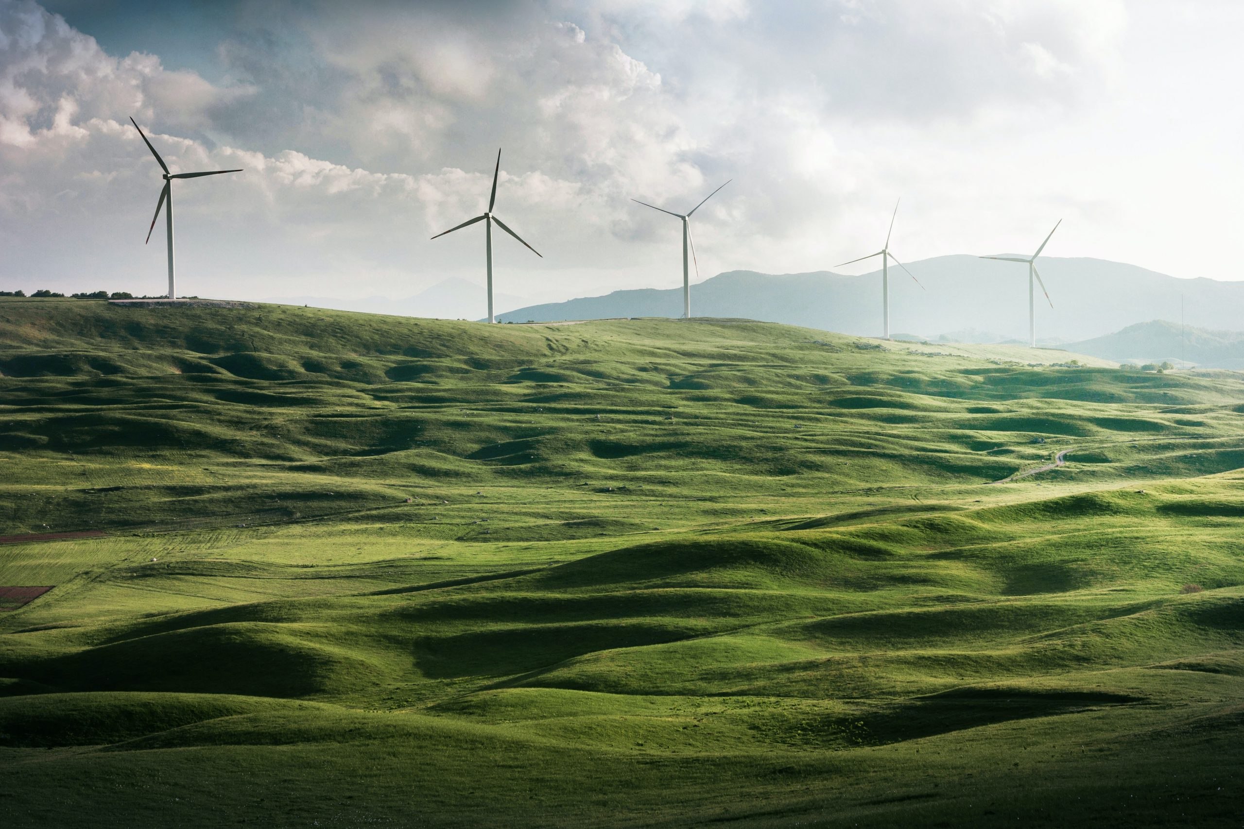 AleaSoft - parque eolico