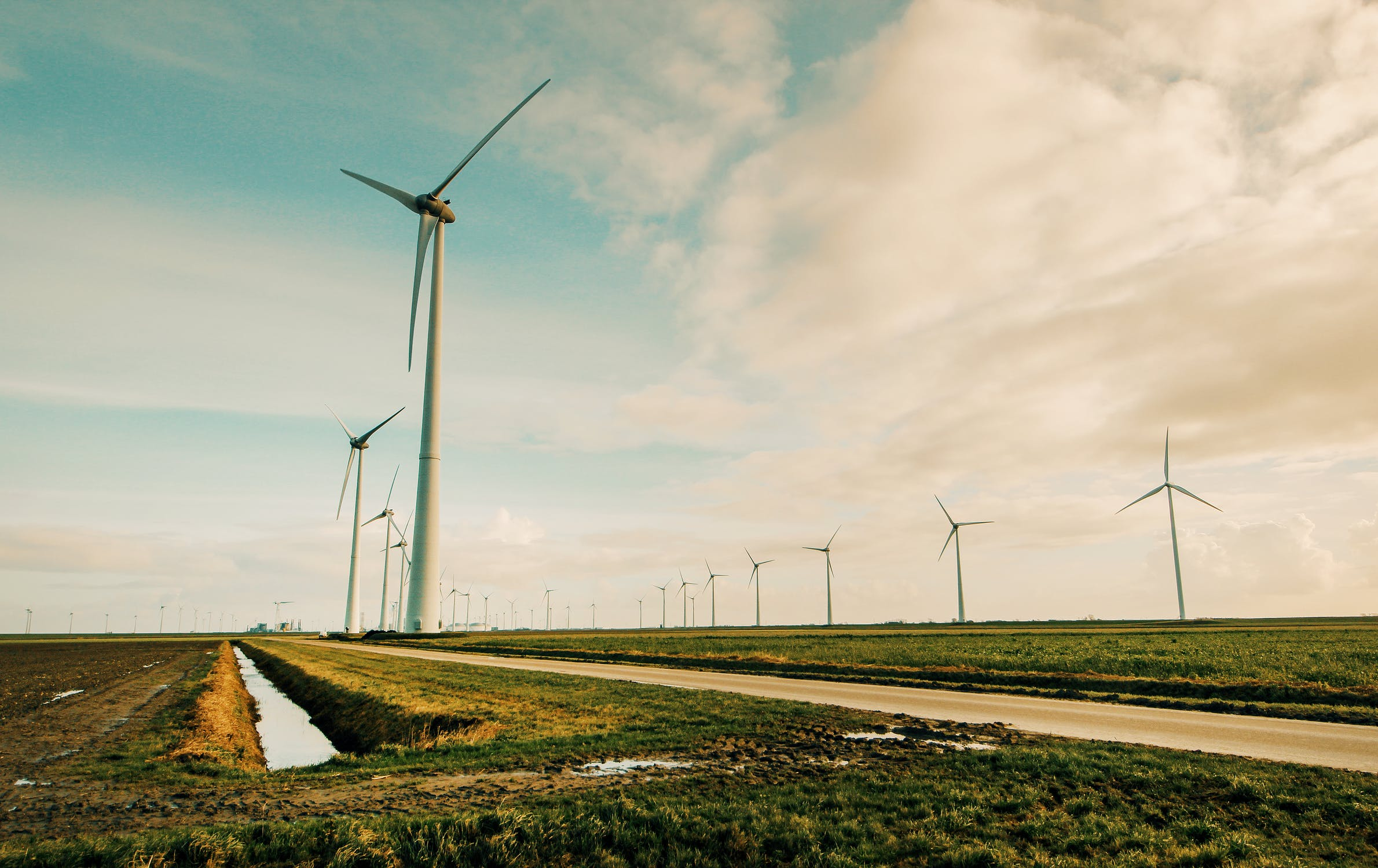 AleaSoft - Wind power park renewable energy
