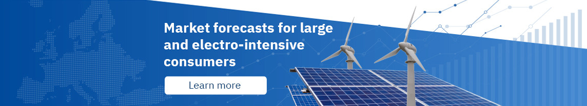 Market forecasts for large and electro‑intensive consumers